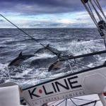 voile, transat, ambiances, large, offshore, race, course, photographes skippers, Jacques Vabre
